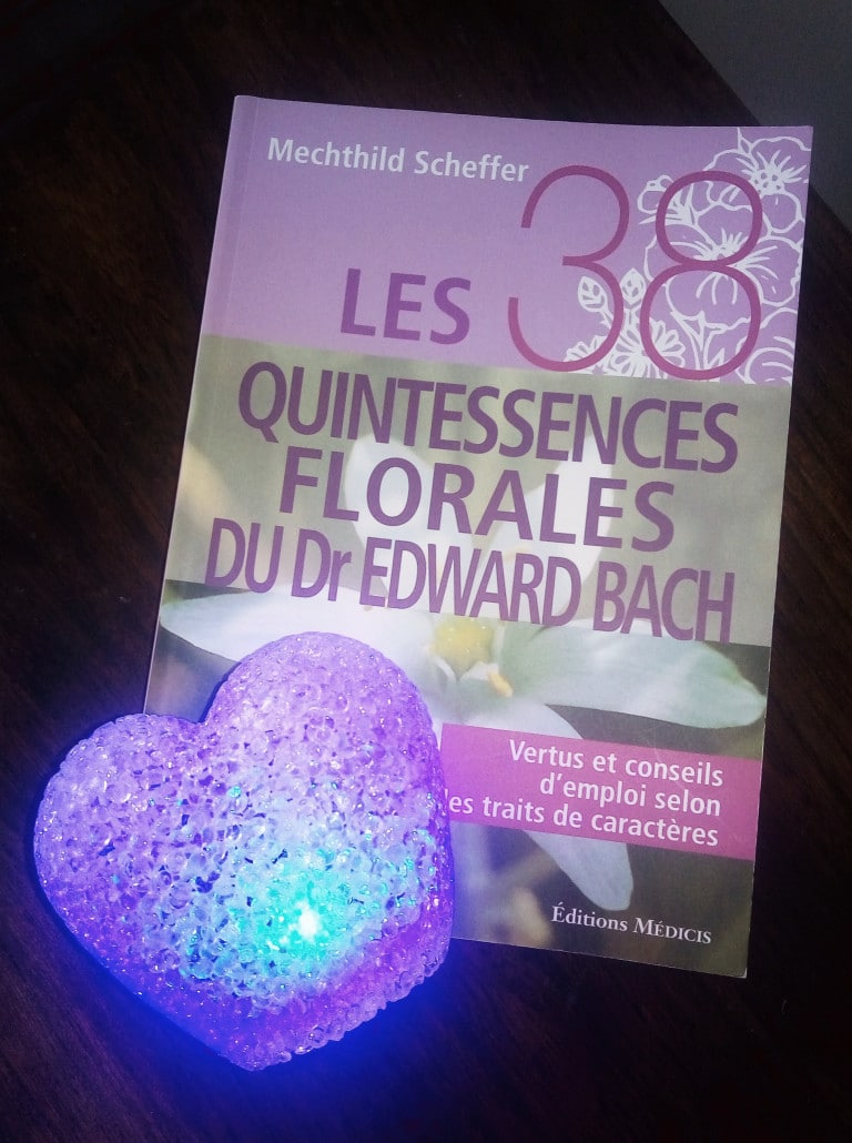 les 38 quintessences florales du dr edward bach bien-être au rendez vous sterenn